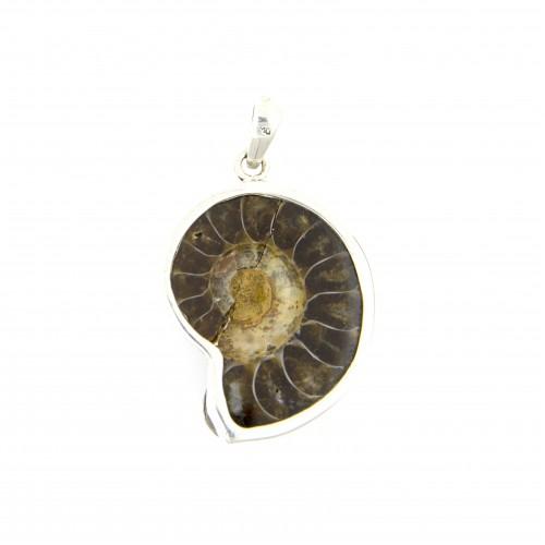 Anhänger aus Ammonit, silber gefasst, 27 mm - 42 mm